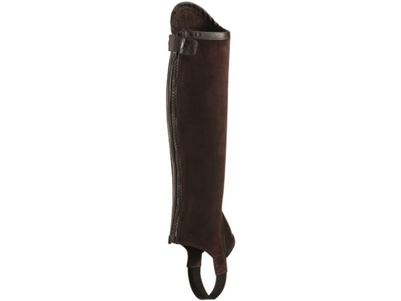 Ariat Concord Chap in smooth chocolate Gr. XSM