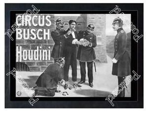 Historic-Circus-Bush-with-Harry-Houdini-Ca-1900-Advertising-Postcard