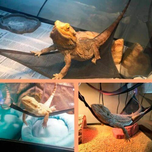 2 Pcs/Set Reptile Lizard Climb Bearded Dragon Hammock Reptile Sleeping Bed Nest | eBay