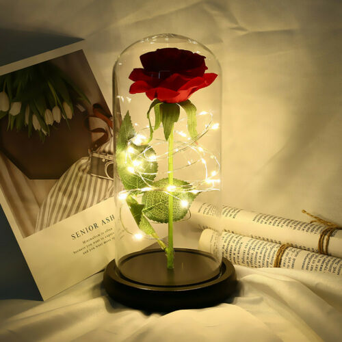 Beauty and the Beast Enchanted Immortal Rose Flower In Glass LED Lighte Romantic