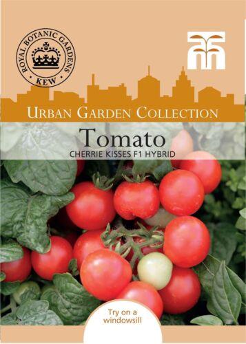 5 graines THOMPSON /& Morgan-Kew Urban-Tomate Sweet N Neat Cherrie Kisses