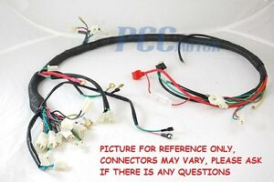 Sunl Wiring Harness - Wiring Diagram K8 on