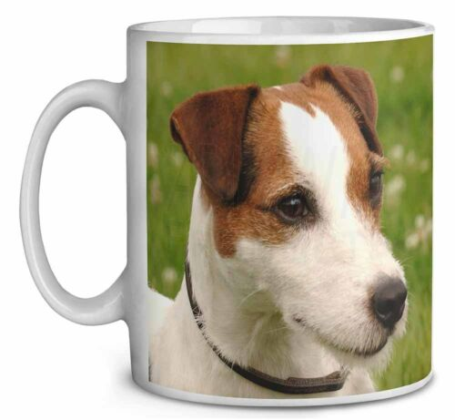 Jack Russell Terrier Dog Coffee//Tea Mug Christmas Stocking Filler Gift AD-JR1MG