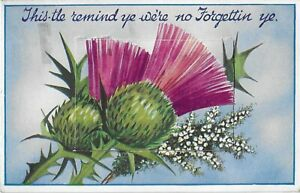 VIEW NOVELTY POSTCARD - THIS-TLE REMIND YE WERE NO FORGETTIN YE - POSTED -1950