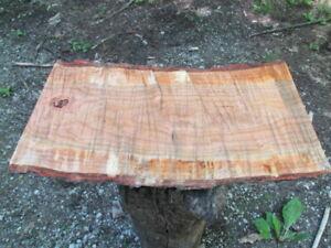 Wild-Cherry-Wood-20x10-11x2-034-Slice-Fresh-Cut-Slab-Stool-Wedding-Display-Sign-15K
