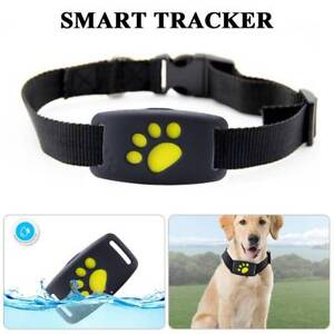 Details About Mini Dog Cat Collar Pet Id Locator Real Time Gps Tracker Gsm Tracking Waterproof