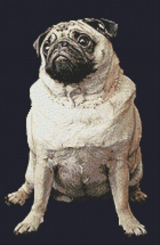 "Pug Dog Puppy Counted Cross Stitch Kit 10/"" x 15/"" 25.5cm x 38cm 14 ct"