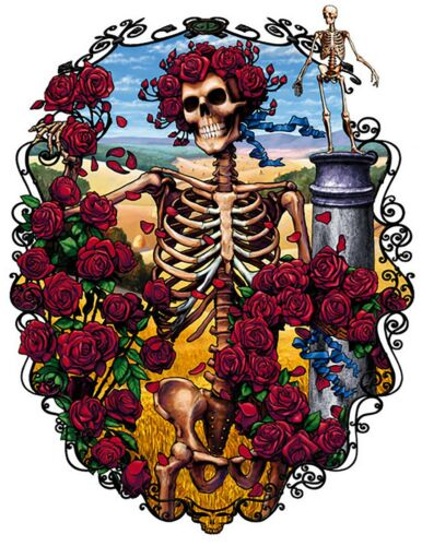 Grateful Dead Iron On Transfer For T-Shirt /& Other Light Color Fabrics #5