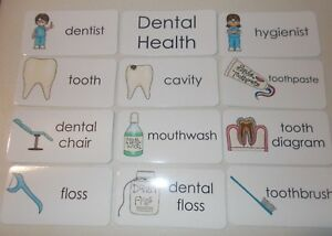 11-Laminated-Dental-Health-Picture-and-Word-Flashcards-Preschool-and-Daycare-le