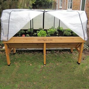 Image Is Loading Large Vegtrug Planter Raised Bed FREE Frame Amp
