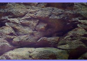 Aquarium-Deko-100-X-50cm-RUCKWANDFOLIE-Fotorueckwand-Zubehoer-Poster-4955