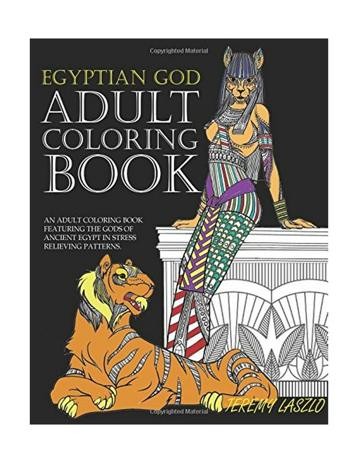 Adult Coloring Bks Book An