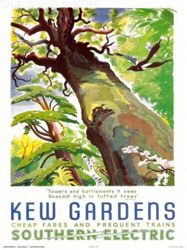ART PRINT POSTER VINTAGE TRAVEL KEW GARDENS SOUTHERN ELECTRIC TREE BIRD NOFL1532
