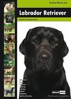 Labrador Retriever by Welzo Media Productions (Paperback, 2010)