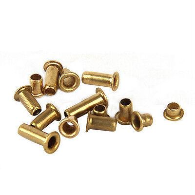 100 PCS M3/M3.5 Copper Hollow RivetTubularl Rivets Round Head Rivets