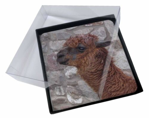 4x South American Llama Picture Table Coasters Set in Gift Box, AL4C