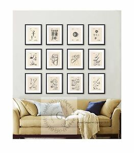 Retro Golf Prints Set Of 12 Wall Hanging Home Decor Golf