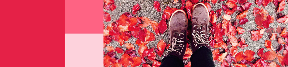 Shop event Fall Footwear Must-Haves | All under £40 Office, JD Williams & More Under £40.