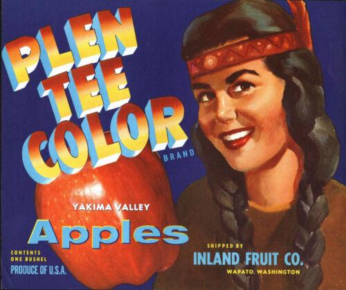 *Original* PLEN TEE COLOR Native American Maiden BLUE Apple Label NOT A COPY!
