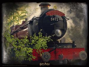 Harry Potter - 3d Image 500 Pièce Puzzle (poudlard Express)