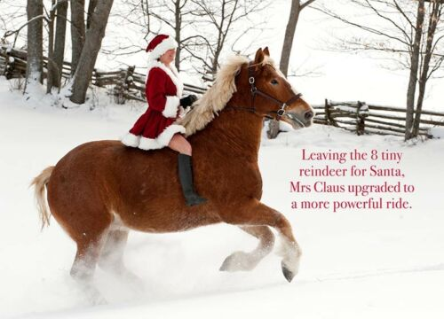 Mrs Claus Upgraded Rides Belgian Horse Christmas Cards