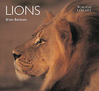 Lions by Brian Bertram (Paperback, 2005)
