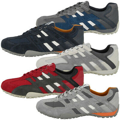 Geox Respira Snake C Sneakers in rot grau Herren Schnürschuhe