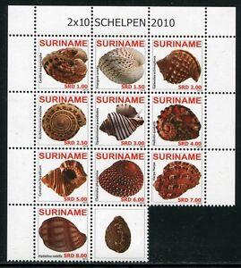 Suriname-2010-Conchiglie-Shells-schelpen-lumache-di-mare-animali-marini-2361-2370-MNH