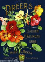 1899 Dreer's Garden Vintage Flowers Seed Packet Catalogue Advertisement Poster