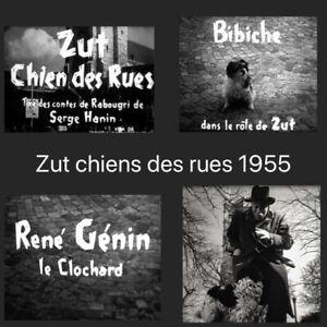 film-16mm-034-Zut-chien-des-rues-034-avec-Rene-Genin-1-NB-VF-250M-sonore-optique