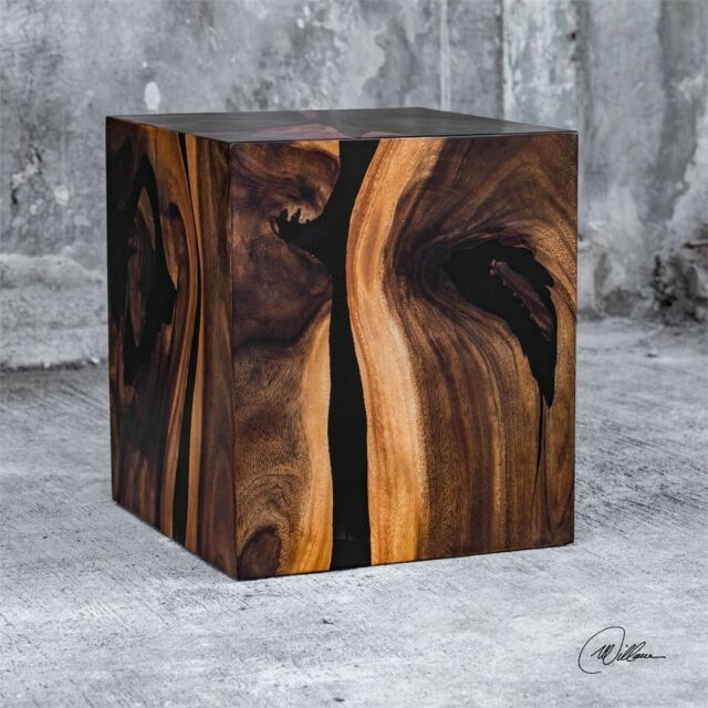 Acacia Wood Black Resin Cube Accent End Table Modern Natural Decor