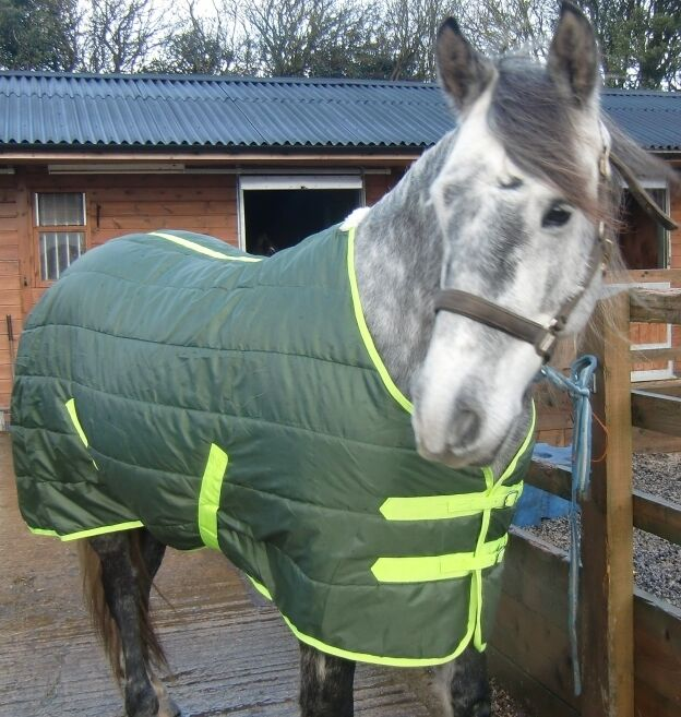 The SHETLAND Medium weight Stable Rug . Extra deep for warmth. Super smart.