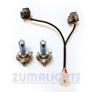 yamaha zuma 125 dual headlight wiring harness w 60 55w bulbs 2009 rh ebay com roots headlight wiring kit price roots headlight wiring kit price