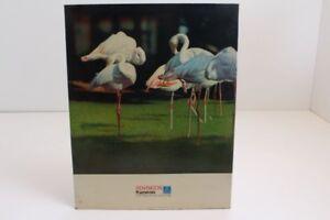 Pappschild-Bild-Schild-Schaufenster-Reklame-VEB-Pentacon-Kameras-DDR-Dresden