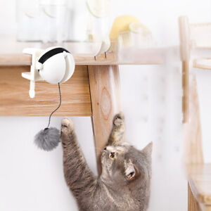 Lustige-Katze-Teaser-Spielzeug-Hebe-Ball-elektrische-flattern-rotierenden-heZJP