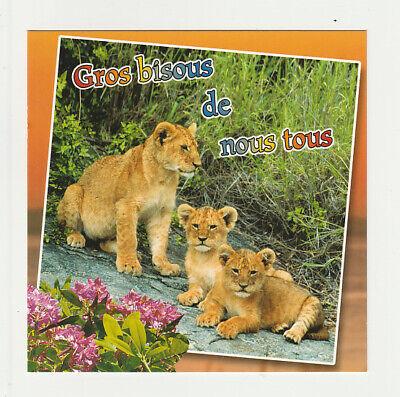 LIONNE LIONCEAUX carte postale n° 6028/64 GROS BISOUS DE NOUS TOUS ...