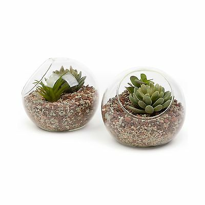 Small Glass Ball Terrarium Tabletop Air Plant Display Globe Set of 2 NEW