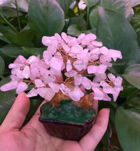 Lucky Tree!! Natural Rose Quartz Crystal Gem Tree AAA