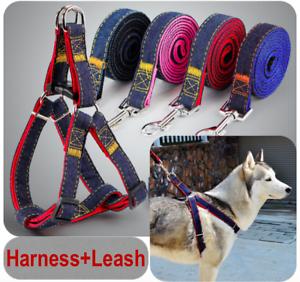 Harness-Leash-Collar-Jean-Style-Comfy-Dog-Pet-Puppy-Lead-Control-Heavy-Duty