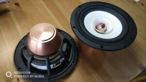 pair-davidlouis-aduio-HiEND-6-5inch-fullrange-speaker-NEO-magnet-PK-fostex