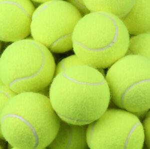 16-x-New-Premium-Quality-Pressurised-Tennis-Balls-Sports-Games-Dog-Training