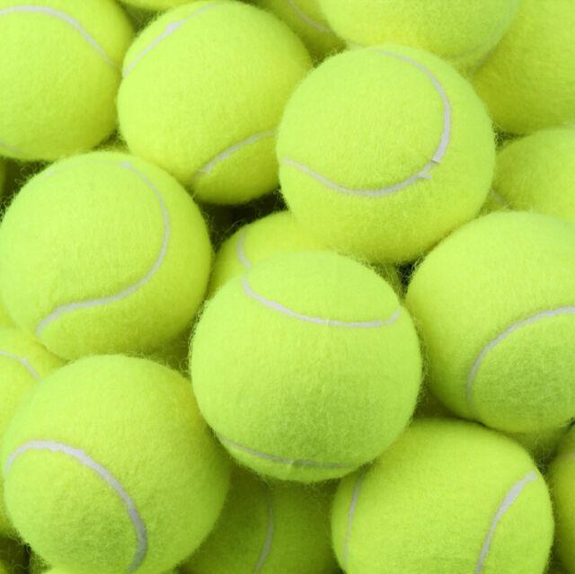 16 x New Premium Quality Pressurised Tennis Balls Sports Games Dog Training