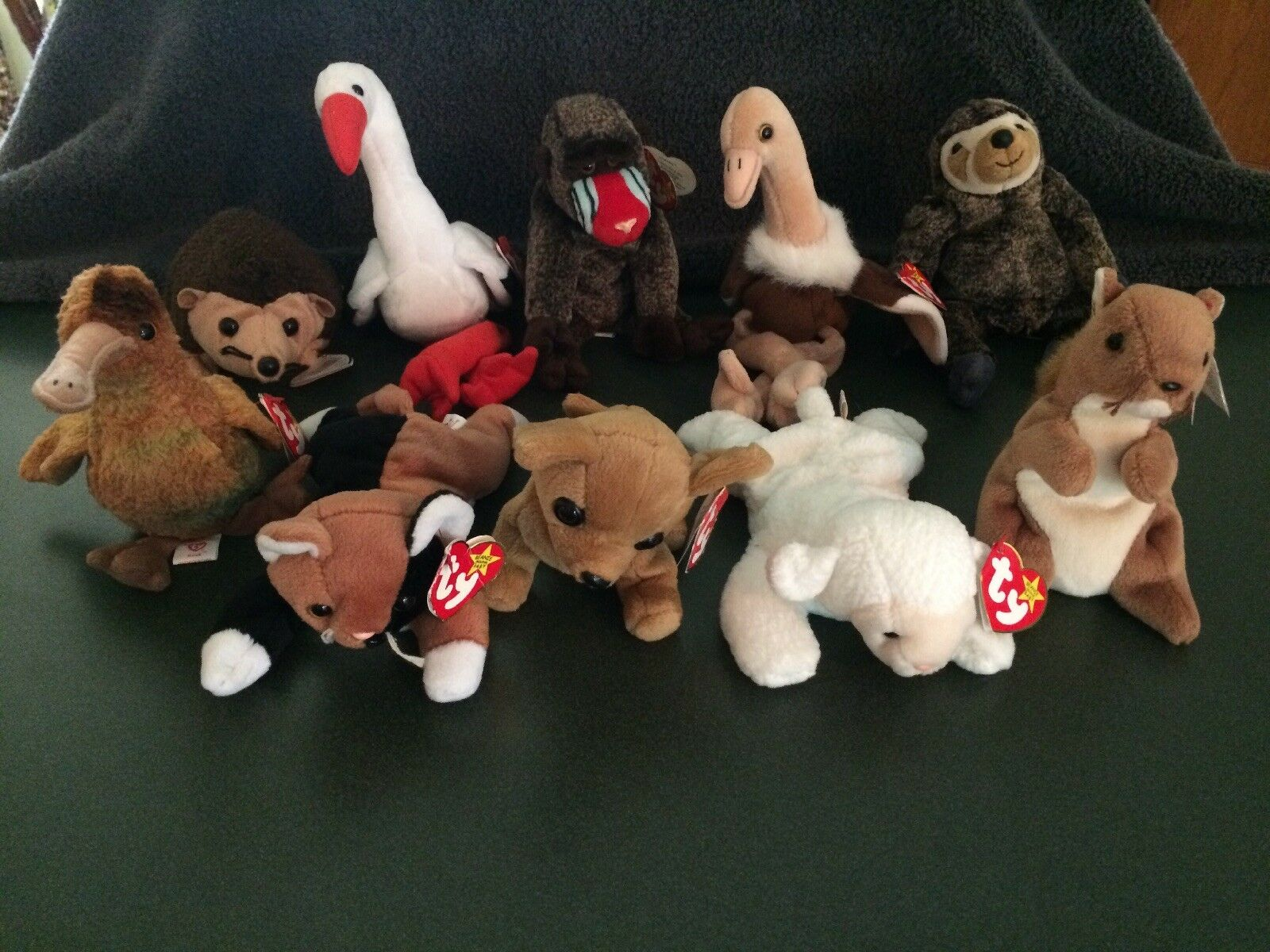 Ty beanie babys menge 10 (alle mit tags)