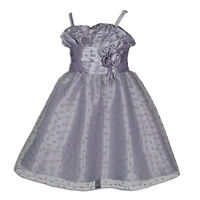 Grey Pageant Party Flower Girl Dress 3-4 Years
