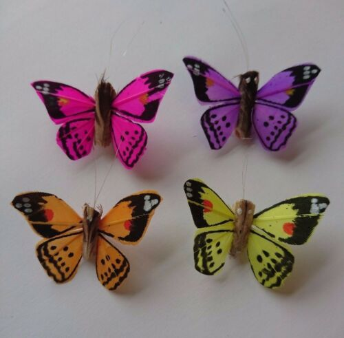 NEON colours 12 per box BRIGHT Orange dot feather butterflies