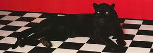 POSTER-ANIMAL-BLACK-PANTHER-FREE-SHIPPING-6905-RP64-G