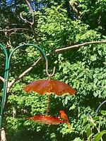 Birds Choice Oriole Nectar Feeder With Weather Guard Kit, New, Free Shipping