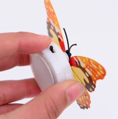 Butterfly Colorful Changing LED Night Light Lamp Home Room Party Desk Wall Decor
