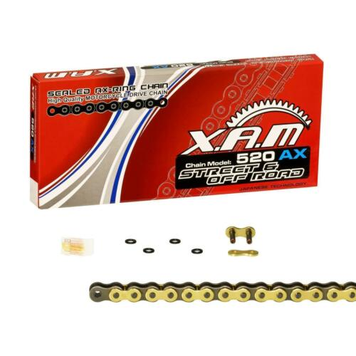 SILENT GOLD Kettensatz Kawasaki Versys 650 07-16 LE650A LE650C LE650E; XAM extra