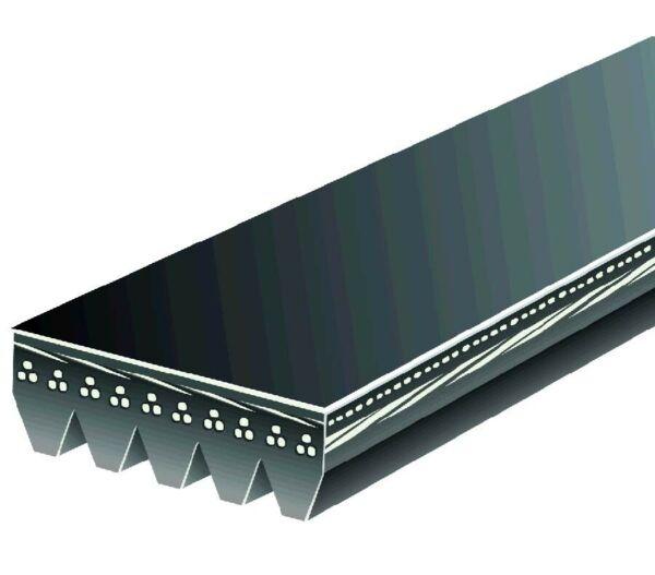 Serpentine Belt-Automotive V-Ribbed Belt Standard Roadmax 6K612AP